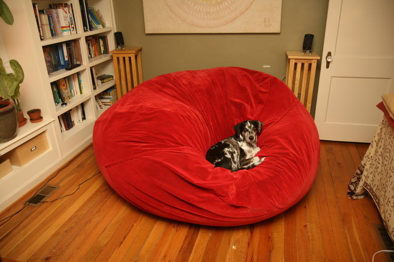 A picture of a puppy dog sitting in the center of a bright, red, giant Fombag